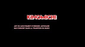 Présentation Shinbudo Kinomichi